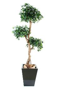 Arbre artificiel Ficus retusa crazy - plante synthétique - H.150 cm vert