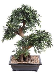 Arbre artificiel Bonsaï Black Willow coupe - plante synthétique intérieur - H.70 cm